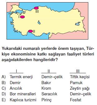turkiyede_sanayi_cozumlu_testi_013