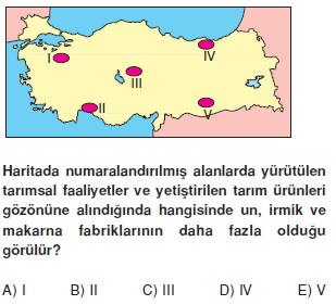 turkiyede_sanayi_konu_testi_014