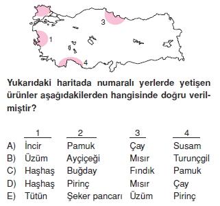 turkiyede_tarim_yerlesme_hayvancilik_balikcilik_konu_testi_2_005