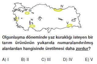 turkiyede_tarim_yerlesme_hayvancilik_balikcilik_konu_testi_2_007