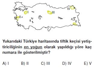 turkiyede_tarim_yerlesme_hayvancilik_balikcilik_konu_testi_2_009