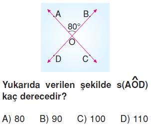 6sinifacilariolcmekonutesti2_009