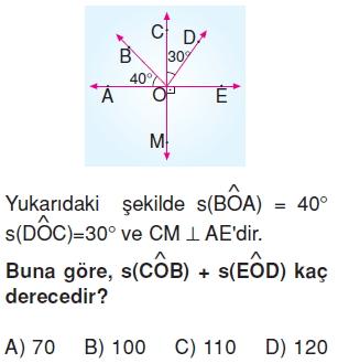 6sinifacilariolcmekonutesti3_010