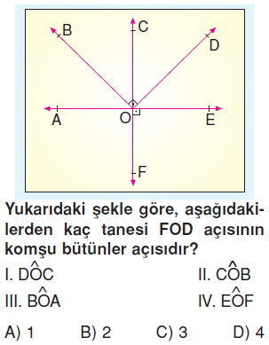6sinifacilartest4_005
