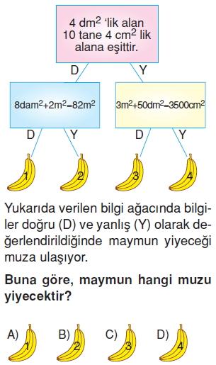 6sinifalaniolcmekonutesti1_004