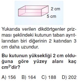 6sinifalaniolcmeprizmalarinalanikonutesti3_005