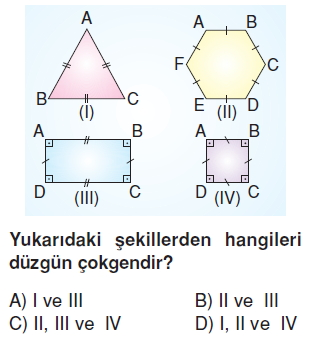 6sinifcokgenlerkonutesti3_005