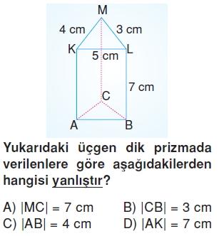 6sinifgeometrikcisimlercozumlutest_004