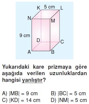 6sinifgeometrikcisimlerkonutesti1_005