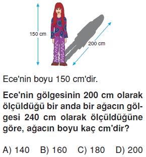 6siniforanveorantıcozumlutest_009