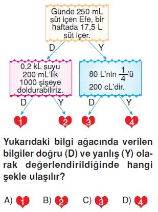 6sinifsivilariolcmekonutesti1_003