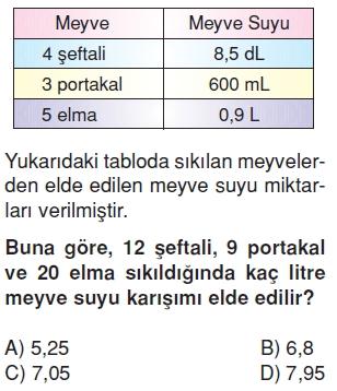 6sinifsivilariolcmekonutesti1_009