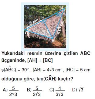 8sinifdikucgendekidaracilarintrigonometrikoranlarict_013