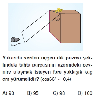 8sinifdikucgendekidaracilarintrigonometrikoranlarikt2_004