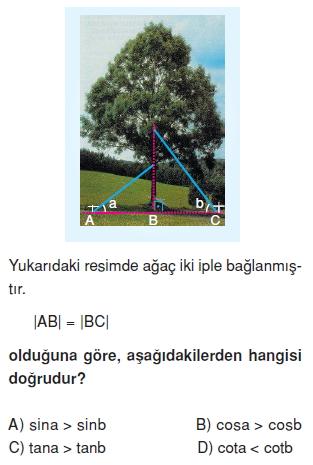 8sinifdikucgendekidaracilarintrigonometrikoranlarikt3_010