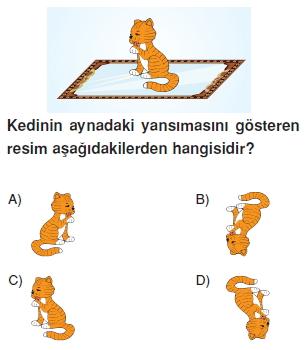 8sinifdonusumgeometrisikonutesti4_007