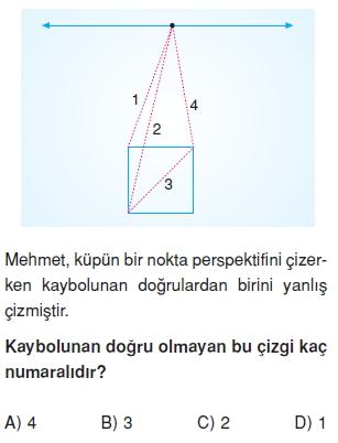 8sinifperspektifct_007