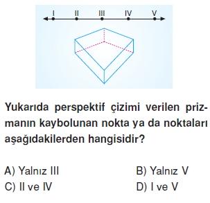 8sinifperspektifct_010