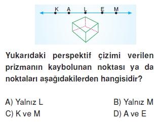 8sinifperspektifkt2_001