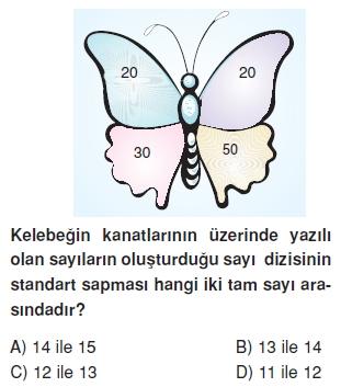 8sinifstandartsapmaçt_004