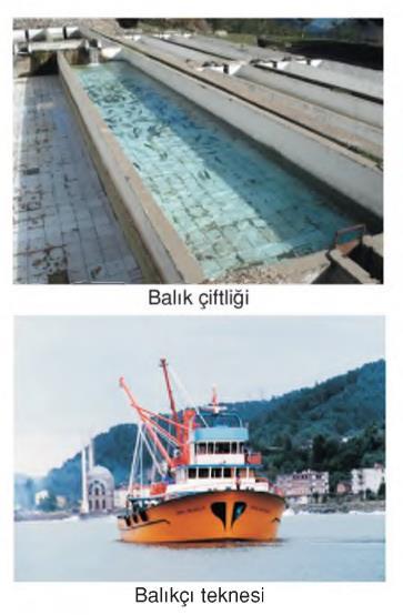 su kaynakları