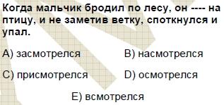 2008kpdsmayisruscasoru_006