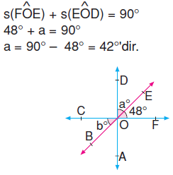 6.sinif-acilari-olcme-48