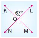 6.sinif-acilari-olcme-50