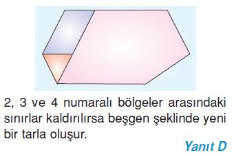 6.sinif-cokgenler-20