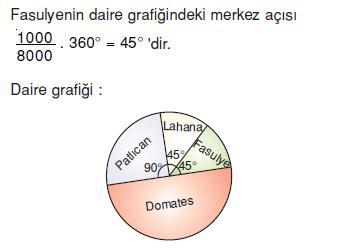 daıre-grafık-ornek-8