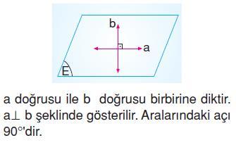 dogru-dogruparcasi-ısın-ornek-36
