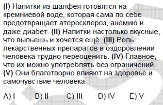 2009kpdsilkbaharruscasoru_059