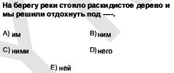 2011kpdsilkbaharruscasoru_005