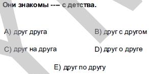 2012kpdssonbaharruscasoru_004