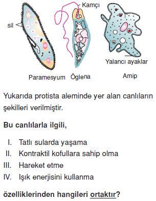 Canlilarin-cesitliligi-ve-siniflandirilmesi-14