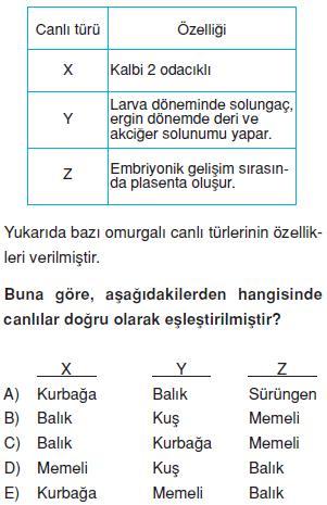 Canlilarin-cesitliligi-ve-siniflandirilmesi-23