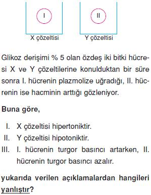 Canliligin-temel-birimi-hucre-12