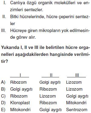 Canliligin-temel-birimi-hucre-16