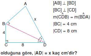 Dik-ucgen-ve-trigonometri-oklid-teoremi-5