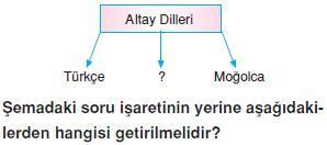 Dillerin-siniflandirilmasi-ve-turkcenin-dunya-dilleri-arasindaki-yeri-4