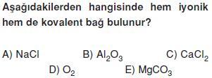 Kimyasal-turler-arasi-etkilesmeler-17