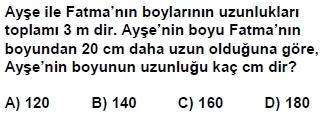 dpy5sinifakitapcigisoru_039