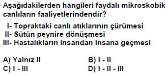 dpy5sinifakitapcigisoru_069
