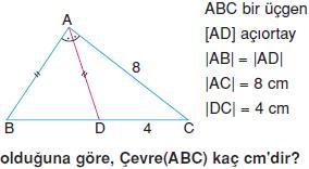 ucgen-aciortay-ve-teget-cemberler-konu-testi-10