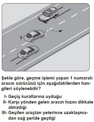 trafik13