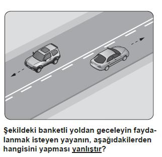 trafik19